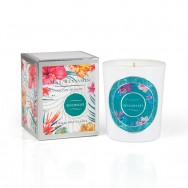 Seychelles Scented Glass Candle