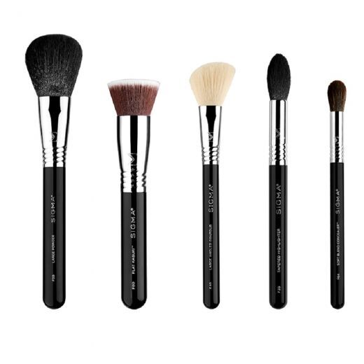 Classic Face Brush Set