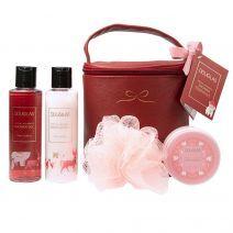 Joyful Holidays Large Shower Essentials Set
