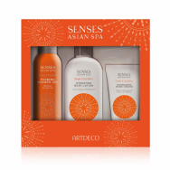 New Energy Gift Set