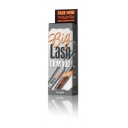 BIG lash blowout! lengthening mascara duo kit