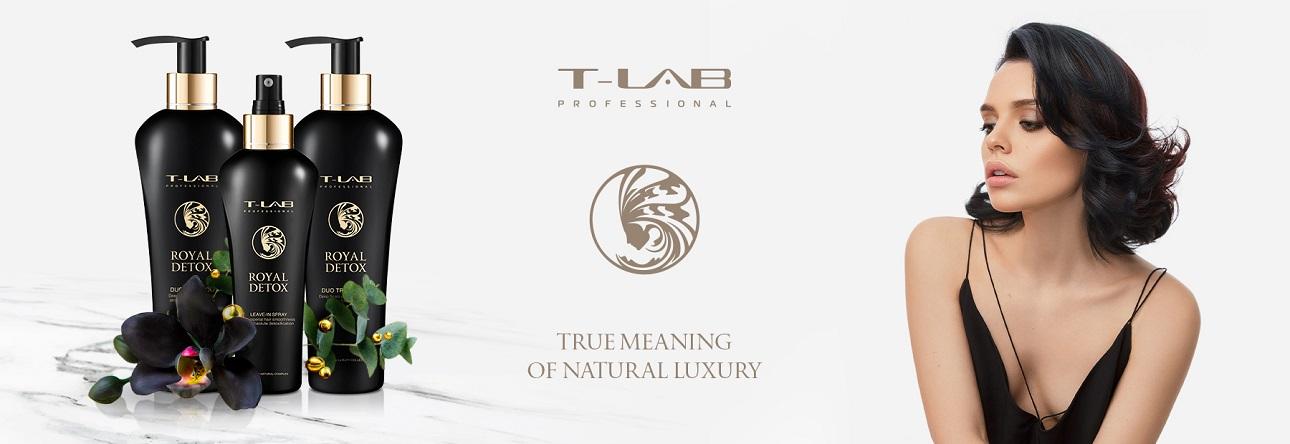 T-LAB PROFESSIONAL